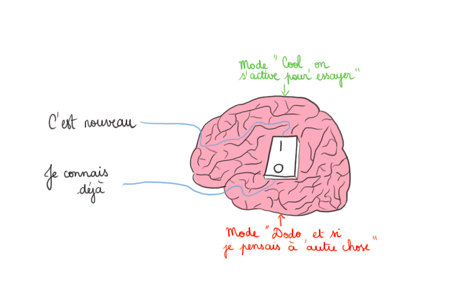Multi potentiel - zèbre - HPI - haut potentiel - le bouton off du cerveau - besoin de stimulations pour ne pas s'ennuyer au travail